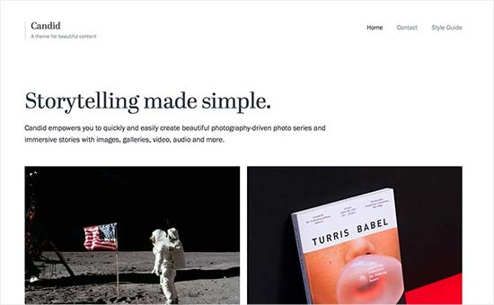 Image word-image-12.jpeg of Tutorial on choosing a WordPress Theme for WPSOLR