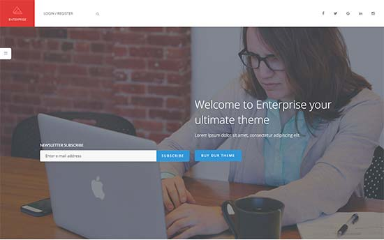 Image word-image-17.jpeg of Tutorial on choosing a WordPress Theme for WPSOLR