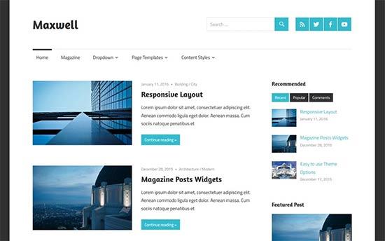 Image word-image-18.jpeg of Tutorial on choosing a WordPress Theme for WPSOLR