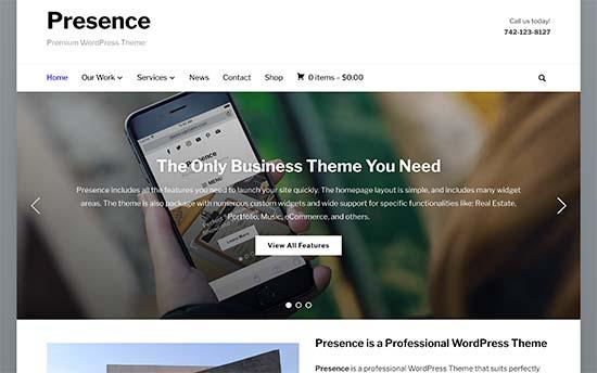 Image word-image-22.jpeg of Tutorial on choosing a WordPress Theme for WPSOLR