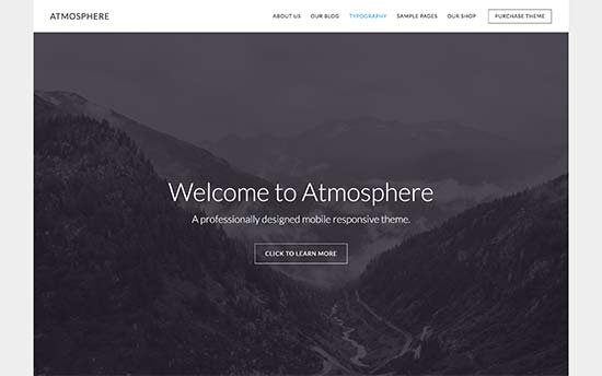 Image word-image-25.jpeg of Tutorial on choosing a WordPress Theme for WPSOLR