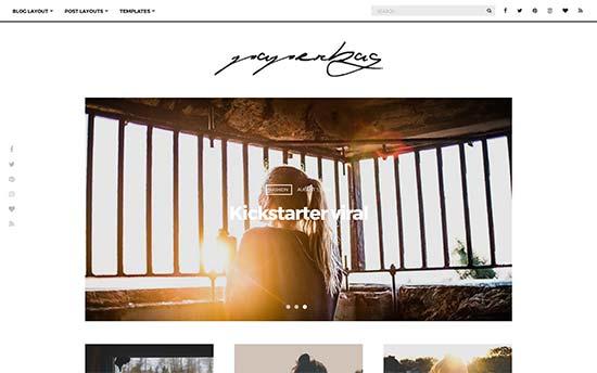 Image word-image-29.jpeg of Tutorial on choosing a WordPress Theme for WPSOLR