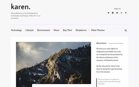 Image word-image-30.jpeg of Tutorial on choosing a WordPress Theme for WPSOLR