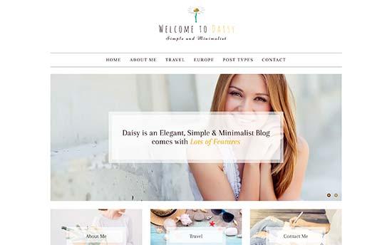 Image word-image-31.jpeg of Tutorial on choosing a WordPress Theme for WPSOLR