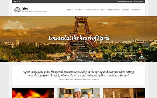 Image word-image-34.jpeg of Tutorial on choosing a WordPress Theme for WPSOLR