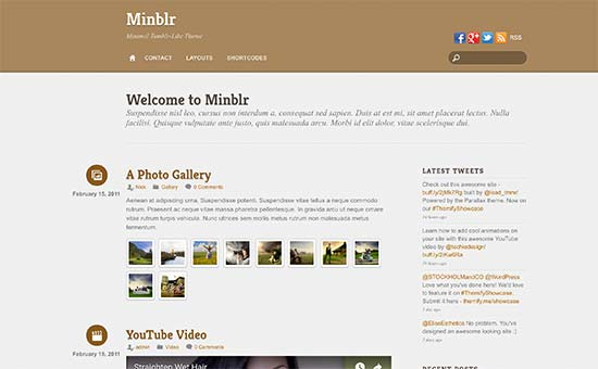 Image word-image-36.jpeg of Tutorial on choosing a WordPress Theme for WPSOLR