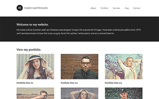 Image word-image-9.jpeg of Tutorial on choosing a WordPress Theme for WPSOLR