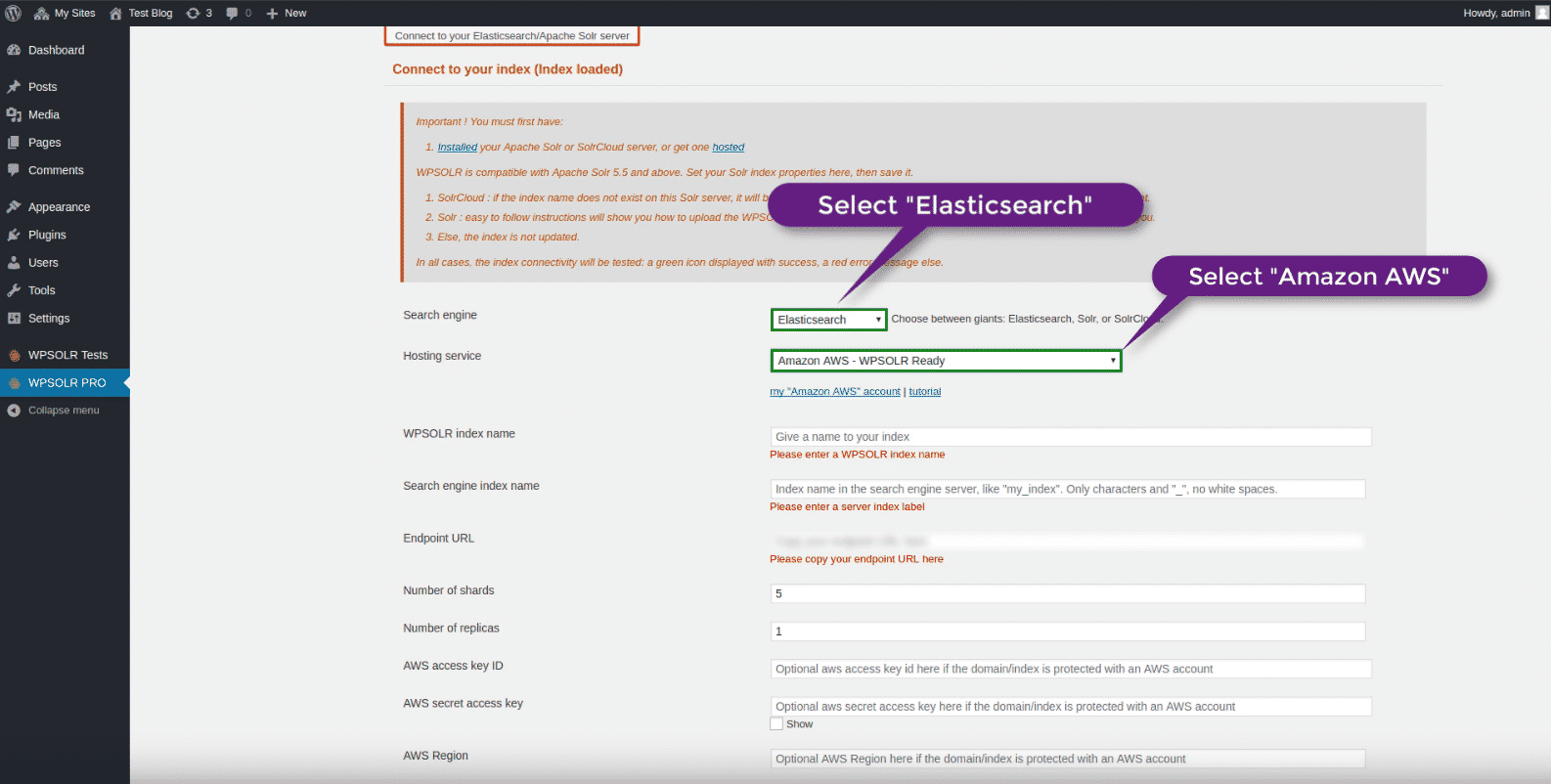 WPSOLR Amazon index: select Amazon hosting