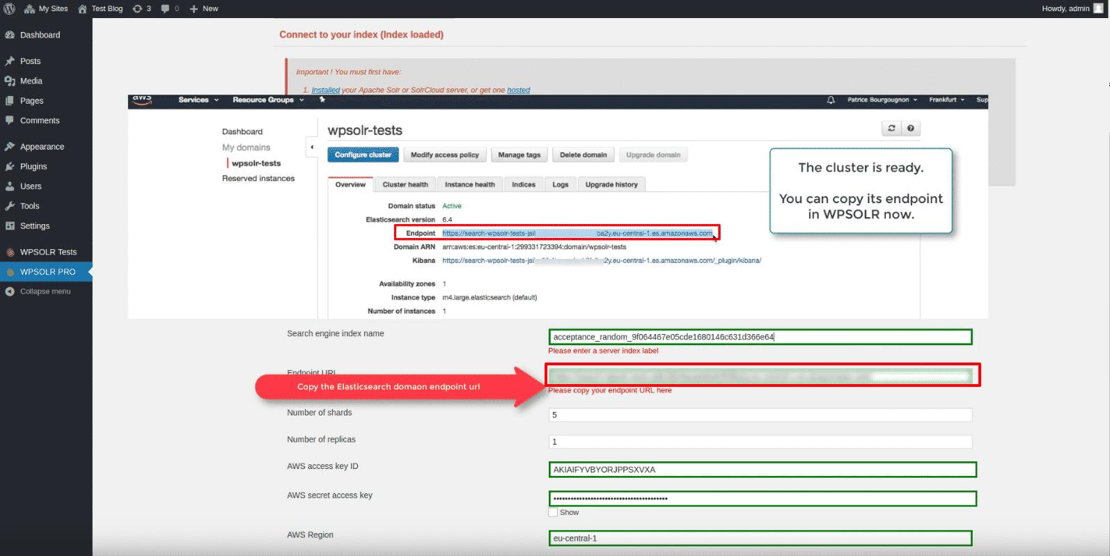 WPSOLR Amazon index: paste Amazon domain endpoint url