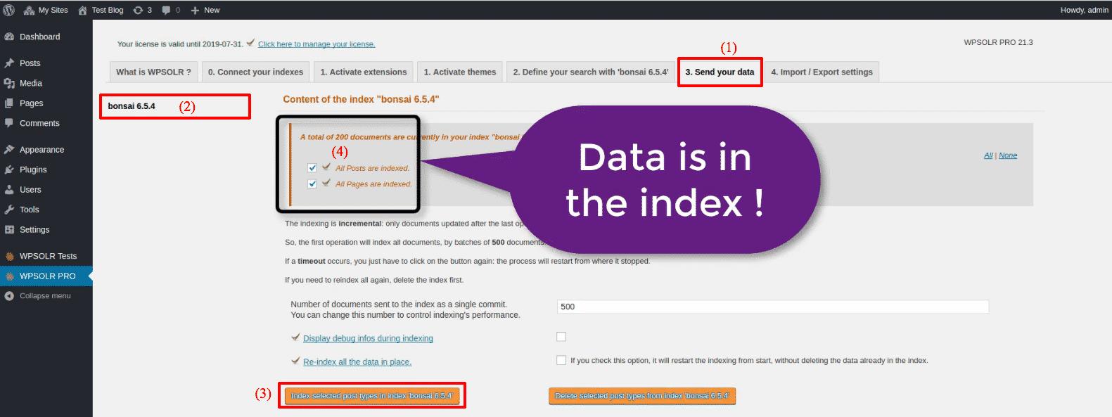 Bonsai Elasticsearch: new index is indexed