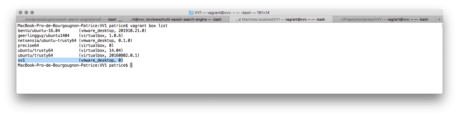Image word-image-7.png of How to replace a VMWare Fusion Pro VM in a Vagrant deployment?